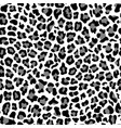 gray black and white leopard fashion seamless vector image