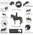 Horse label set vector image