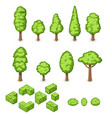 isometric set park plants trees and vector image