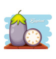 fresh eggplant healthy food vector image