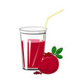 glass with pomegranate juice vector image
