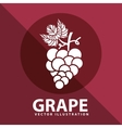 grape icon design vector image