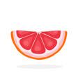 half grapefruit slices vector image vector image