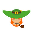 leprechaun sleeping dwarf with red beard asleep vector image