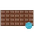 Realistic chocolate bar vector image vector image