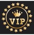 VIP design exclusive and premium concept vector image vector image