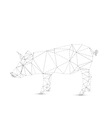 Abstract pig vector image vector image