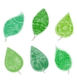 green leafs with henna patterns vector image vector image