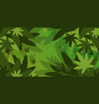 medical cannabis or marijuana leaves background vector image