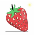 Strawberry on White Background vector image vector image