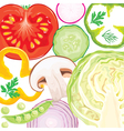 Vegetable mix vector image vector image
