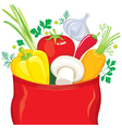 Vegetables fly out of the package seasonings vector image