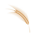 barley ear simple icon in vector image