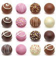 chocolate candies vector image vector image