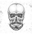 hand drawing hipster skull on grunge background vector image vector image