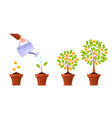 hand watering money tree financial plant golden vector image
