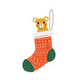 red sock with teddy bear traditional christmas vector image vector image