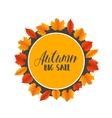 autumn sales banner with colorful leaves vector image vector image