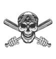 bandit skull in bandana vector image vector image