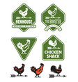 chicken hen or rooster logos and badges vector image vector image