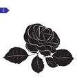 Flower and leaves of roses in black and white vector image vector image