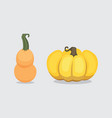 set cartoon pumpkin isolated autumn vector image vector image