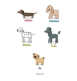 cute cartoon dogs of various breeds vector image vector image
