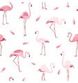 pink flamingo birds flamboyance feather pattern vector image