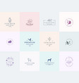 twelve abstract feminine signs or logo vector image vector image