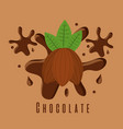 chocolate cocoa ingredient sugar splash vector image
