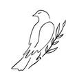 line art dove sitting pigeon logo drawing black vector image vector image