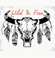 skull a bull bison skull decorated with vector image vector image