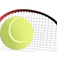 Tennis Ball and Racket vector image vector image