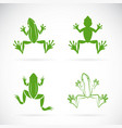 group of frogs design on white background vector image