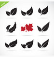 leaves icon set on white background vector image