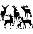 Deers Set vector image