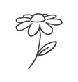 doodle flower hand drawn line sketch flower vector image vector image