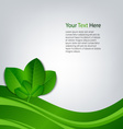 Eco background with green leaves template vector image