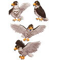 Four eagles in different poses vector image