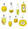 Hand-drawn bottle of oil and olives vector image vector image
