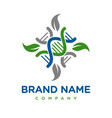 natural genetic logo design vector image vector image