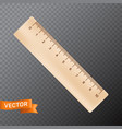ten inch or centimeter straight wooden ruler 3d vector image vector image