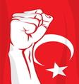 Turkey fist vector image