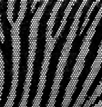 Zebra strippes mosaic background vector image