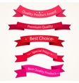 Quality ribbons in red tones vector image