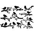 bird and twig silhouettes cute birds vector image vector image