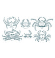 collection elegant drawings various types of vector image vector image