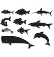fish icons set - dolphin carp shark whale swor vector image