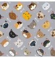 Fur cats pattern background vector image vector image
