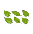 green leaf set nature logo or icon vector image vector image